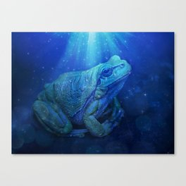 The InFocus Happy Frog Collection VI Canvas Print