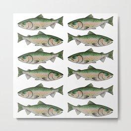 Rainbow Trout II Metal Print