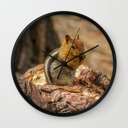 The Squirrel and the Redwood Wall Clock