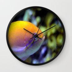 Hey fish!  Wall Clock