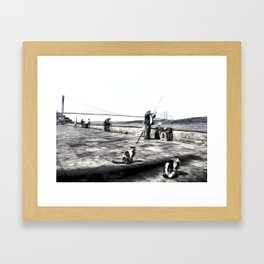 Fishermen And Cats Istanbul Framed Art Print