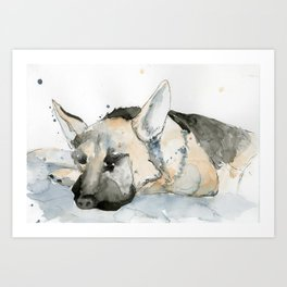 Sleeping puppy Art Print