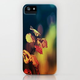 Hazelnuttree in Autumnlight iPhone Case
