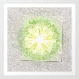 Triptychs Unveiled Flower  ID:16165-114729-45271 Art Print