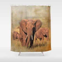 Family Walk Shower Curtain