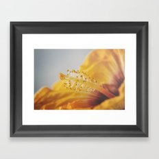 Golden Hibiscus Framed Art Print