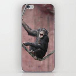 Chimpanzee_001_by_JAMFoto iPhone Skin