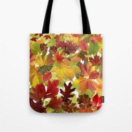 Autumn Fall Leaves Tote Bag