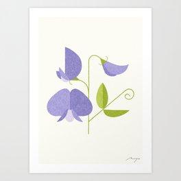 Sweet Pea Art Print