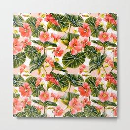 Flowering garden nasturtiums Metal Print