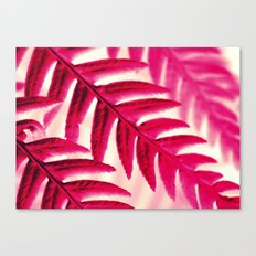 Nature Pattern #1 - Fern (Red Pink) Canvas Print