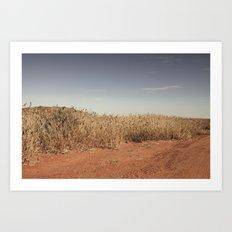 Red Hills #1 Art Print