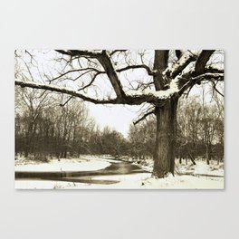 quiet Canvas Print