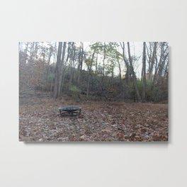Fall Firepit Metal Print