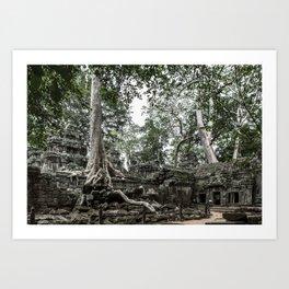 Ta Phrom, Angkor Archaeological Park, Siem Reap, Cambodia Art Print