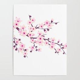 Cherry Blossom Pink White Poster