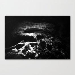 BLACK LAGOON Canvas Print