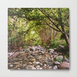Dry Creek Bed on the West Fork Metal Print