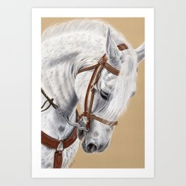 Horse Portrait 01 Art Print