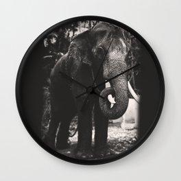 Elephant Love Wall Clock