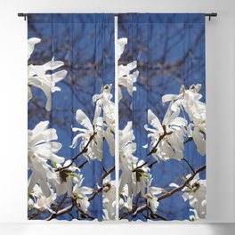 Star filled sky (Star Magnolia flowers!)      Edit Blackout Curtain