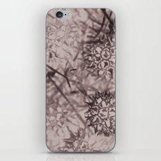 Gum Balls iPhone & iPod Skin
