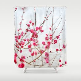 Beautiful Cherry Blossoms at the Imperial Palace in Kyoto, Japan Shower Curtain