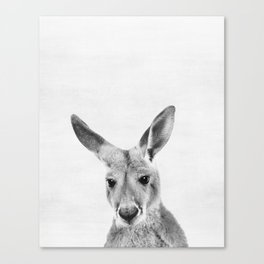 Kangaroo, Animal, ZOO, Australia, Nursery, Minimal, Modern, Wall art Canvas Print