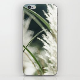 Dissolving in three stages iPhone Skin