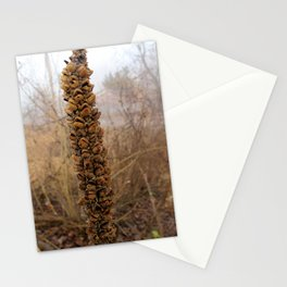 Mullein Stationery Cards