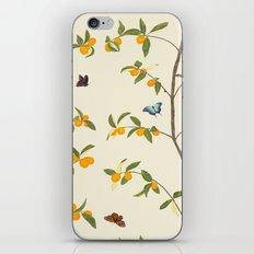 Jenny Chinoiserie Kumquat iPhone & iPod Skin