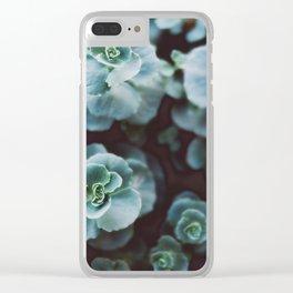 sedum sieboldii Clear iPhone Case
