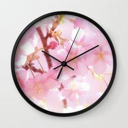 Sakura II Wall Clock