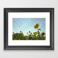 Sunny Flower Framed Art Print