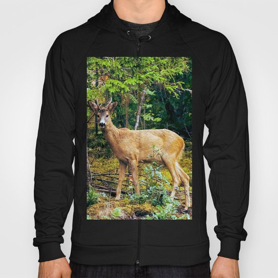 The Wandering Deer Hoody