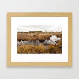 in the marsh Framed Art Print