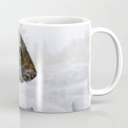 Waterfall Squirrel Coffee Mug