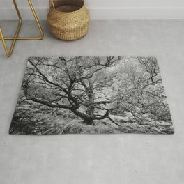Tree - Landscape and Nature Photography Rug