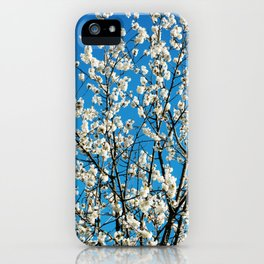 Spring Blossom VI iPhone Case