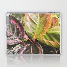 Leafy Laptop & iPad Skin