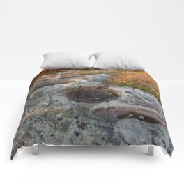 Autumn Huckleberry Fossil Comforters