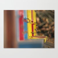 bees Canvas Prints featuring BEES by Sofia Youshi