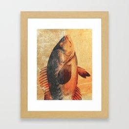 Piscibus 9 Framed Art Print