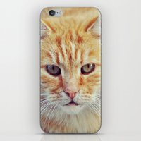 ginger iPhone & iPod Skins featuring Ginger by LindaMarieAnson