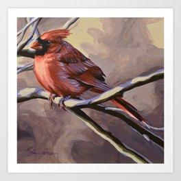 Northern Cardinal 7 Art Print