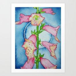 Foxglove by Moonlight Art Print