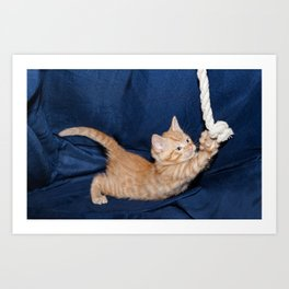 kitten playing with rope in a basket  Art Print