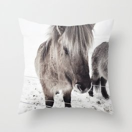 snowy Icelandic horse bw Throw Pillow