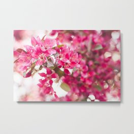 Welcoming Spring Metal Print