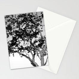 Torote y La Luna Stationery Cards